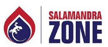 Brennende Gebäude schneller evakuieren dank Salamandra Zone
