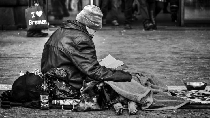 Einwanderung: Wie wir unseren Sozialstaat retten können