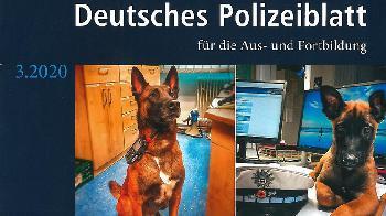 Soziale Netzwerke bieten Chancen für die Polizeiarbeit