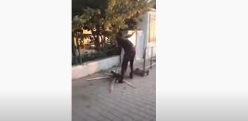 Video schockt Italien: Migrant grillt sich Katze auf Bahnhofsvorplatz