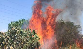 Gaza Ballonterror entzündet 35 Brände in Südisrael