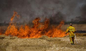 Hamas, Israel erreichen Waffenstillstand