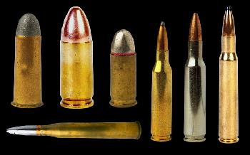 Österreichs Behörden wussten von Munitionskauf des Attentäters