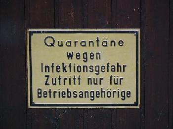 """""""Vierjährige absondern"""": Die irrsten Quarantäne-Schreiben"""