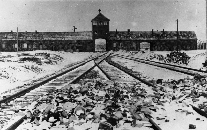 Die Desinfizierung von Auschwitz?