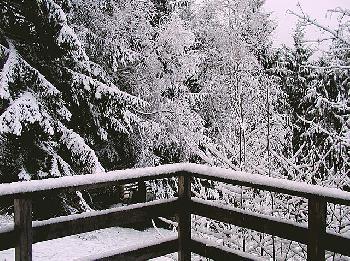 Stell-dir-vor-es-ist-Winter--und-es-schneit