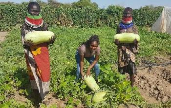 Absolventin kommt mit großen Ideen für das trockene Turkana aus Israel zurück