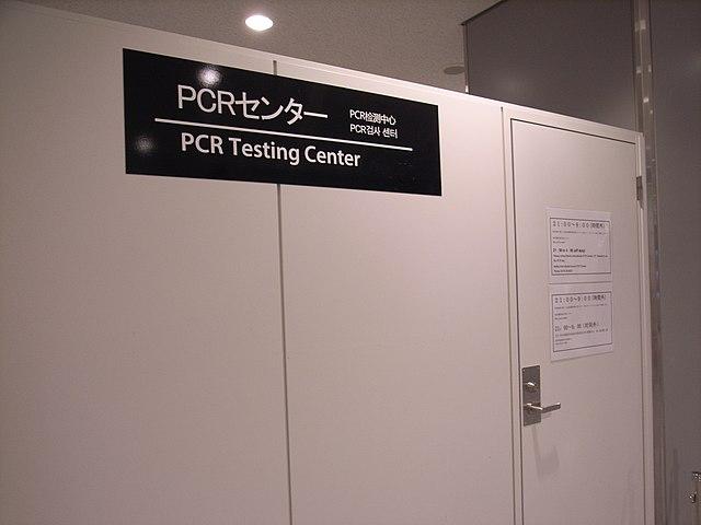 PCR-Testpflicht für alle - außer für illegale Einwanderer