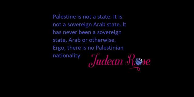 Palästina und die Palästinenser: Ein Ort und ein Volk, die es nicht gibt