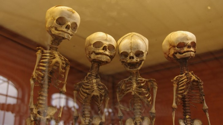 Zahlen zum Tage: Wir testen uns zu Tode, wir fürchten uns zu Tode