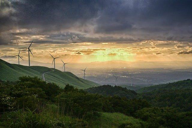 Bürgerentscheid für Windkraftanlagen im Wald