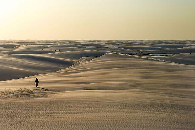 Die Wüste als Ort der Literatur