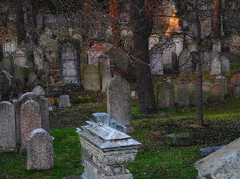Auf-13-Grabsteinen-auf-dem-jdischen-Friedhof-von-Baltimore-wurden-Hakenkreuze-gesprhte