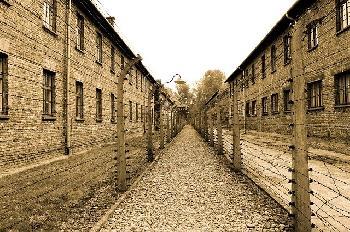 Auschwitz-Museum kritisiert Kongressabgeordnete, weil sie Impfstoffe mit Nazis verglichen hat
