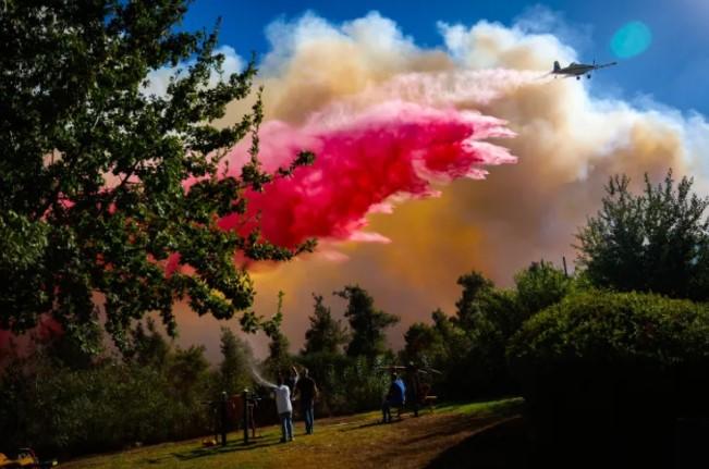 Großbrand in Jerusalem: Fünf Feuer noch aktiv