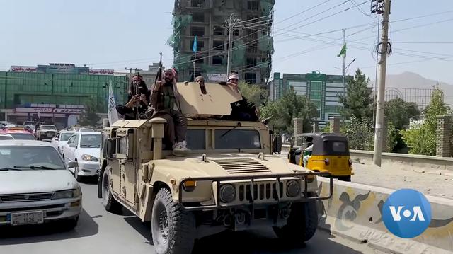 Taliban schließen Kontaktaufnahme mit Israel aus