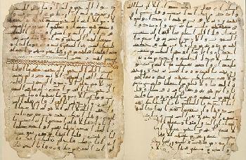 Als-der-Koran-Juden-mit-Eseln-verglich