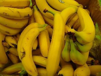 Bananenrepublik-im-Endstadium-Spezial-zum-Nachlesen