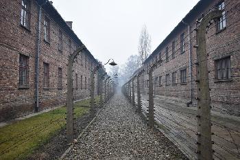 Neue-sterreichische-Ausstellung-im-Staatlichen-Museum-AuschwitzBirkenau-erffnet