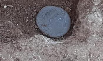 Jugendliche-finden-in-Samaria-antike-Mnzen