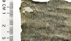 1700 Jahre alter Fluch in Jerusalem entdeckt