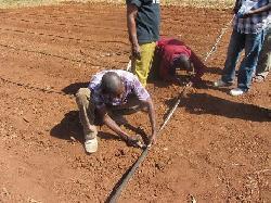 Israelische Agrartechnik in Malawi