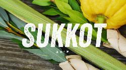 Sukkot und der Zweck des Galut (des Exils)