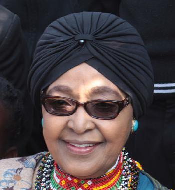 Bystron: ANC-Regierung macht Südafrika unregierbar