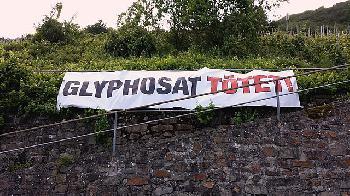 foodwatch zu Glyphosat-Verbot ab 2024