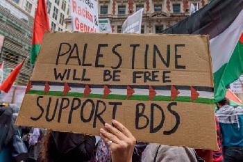 Wer vor lauter Grautönen den Antisemitismus nicht sieht
