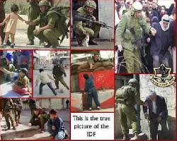 `Die IDF brachte den Arabern Brot und die Freiheit´