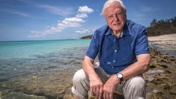 Klimawandel: Tierfilm-Legende Attenborough gibt implizit Täuschung zu