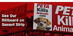 """Tierschützer nehmen Â""""PETAÂ"""" verstärkt ins Visier"""