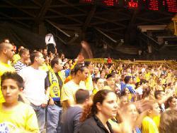 Basketball: Tel Aviv gewinnt gegen Bamberg