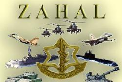 Israel bei Nato-Manöver