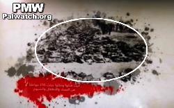 Autonomiebörde präsentiert NS-Opfer als `massakrierte Palästinenser´