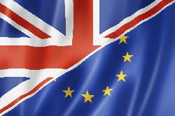 Großbritanien im Brexit-Fieber