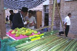 Lerne vom LULAV unsere Liebe richtig zu lenken (Raw Lam zu Sukkot