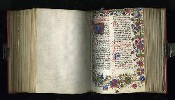 Unter der Haut eines mittelalterlichen Bibelrätsels