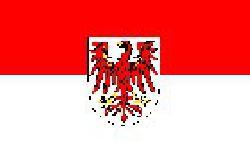 Brandenburg: AfD nur noch drei Prozent hinter der CDU