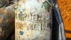 Archäologen finden Gin und Whiskey