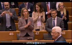 Brunnenvergifter im EU-Parlament