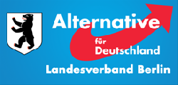 AfD Berlin: Von Bärgida ins Bezirksparlament