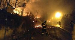 Bilanz nach Bränden: Tausende Hektar Wald zerstört