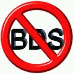 Deutschland gibt Millionen an BDS-Gruppen
